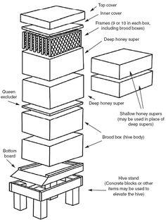 Small Scale Beekeeping- DIY beehive dimensions