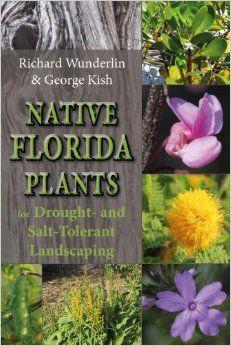 florida native plants.blooming