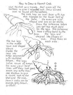 How to Draw Worksheets for Young Artist: How To Draw A