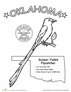 Oklahoma, State outline and Coloring pages on Pinterest