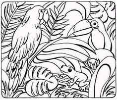 Rainforest animals, Rainforests and Coloring pages on