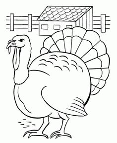 Pages to color, Turkey coloring pages and Turkey on Pinterest
