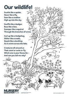 Hedgehog Poems for Kids Poem, The Hedgehog and His Coat