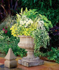 Alfa Img Showing > Full Sun Container Garden Ideas