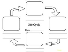 1000+ images about Life Cycle of a Butterfly on Pinterest
