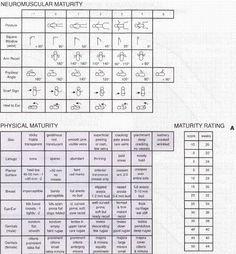 Assessment, Nursing and Templates on Pinterest