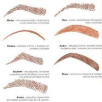 1000+ images about cejas on Pinterest | Eyebrows, Perfect ...