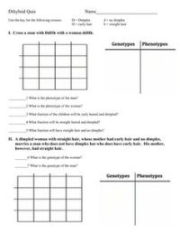 Monohybrid Cross Worksheet | Different types, Different ...
