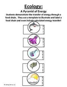 3D Energy Pyramid. Each side of the pyramid represents a
