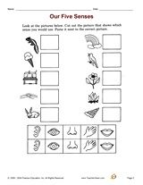 five sense worksheet: NEW 835 FIVE SENSES FREE WORKSHEETS