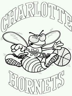 Hornet, Charlotte hornets and Charlotte on Pinterest