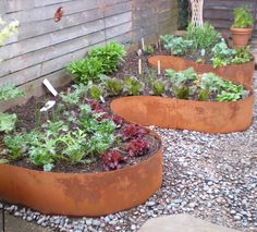 More Garden Edging 9 Creative Ideas! Gardens Creative And Funds