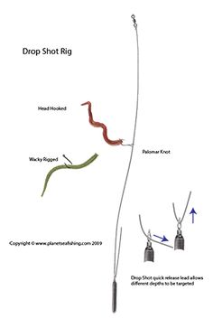 Rig for catching skipjack herring to use as catfish bait