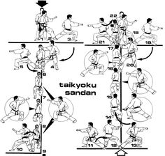 [Drawings of Kicking Techniques] Isshinryu Karate
