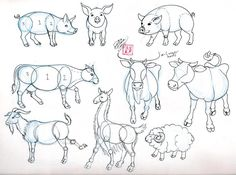 Wings, Piglets and Little pigs on Pinterest