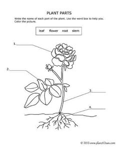 Cut it out, Printables and 3d on Pinterest