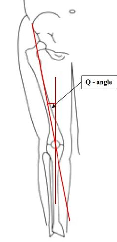 The Radial Nerve sneaks past the carpal tunnel and goes