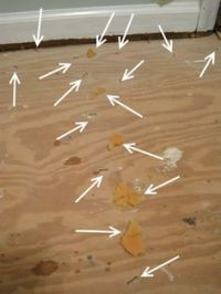 1000+ ideas about Ripping Up Carpet on Pinterest | Paper ...