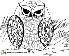 Grumpy Owl coloring and tracing page. This is to go with
