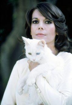Natalie Wood cat love. #cat #NatalieWood
