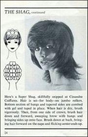 1960s beehive hairdo elke sommer