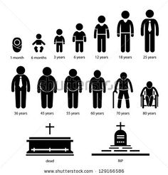 1000+ images about stages of human life on Pinterest