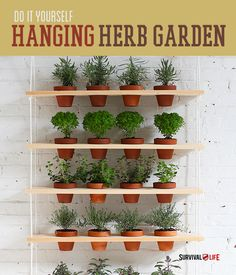 DIY Stack Able Bookshelves And Hanging Indoor Garden — Reddit As
