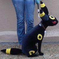 Umbreon Dog Costume | www.pixshark.com - Images Galleries ...