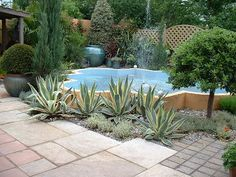 Commercial Landscaping Ideas With Palms Garden Designer