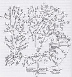 1000+ images about Charts Linguistics on Pinterest