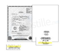 1000+ images about State of Nevada Sample Apostille on