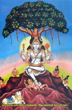 Lord Shiv Hd Wallpaper 1000 Images About Dakshinamurthy On Pinterest Shiva