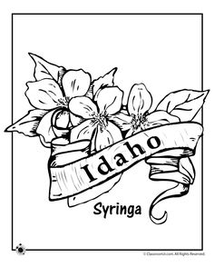 Idaho pattern. Use the printable outline for crafts