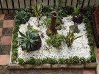 Rock Gardens on Pinterest   53 Photos on xeriscaping ...