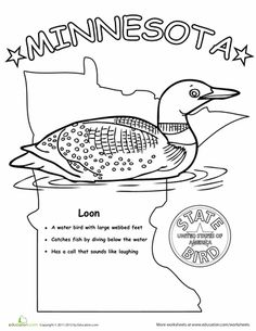 Minnesota State Facts Worksheet: Elementary Version