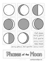 This is a simple cut and paste activity to assess students