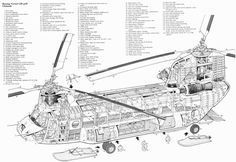 Cutaway, Drawings and Eyes on Pinterest