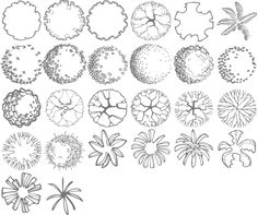 tree symbols landscape design