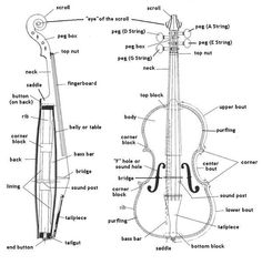 1000+ images about INSTRUMENTOS MUSICALES on Pinterest