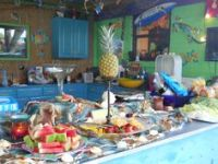 1000+ images about Margaritaville Party Theme on Pinterest ...