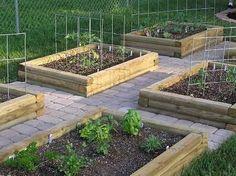 Small Vegetable Garden Design Gardens Raised Beds And Veggie