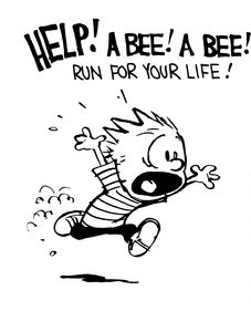 Calvin Hobbes reminds me of you Andrew, I miss you buddy I