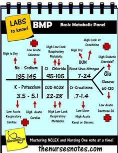 lab values skeleton diagram cat 5 6 wiring nursing labs mnemonics the nurses notes hyperkalemia hypernatremia hyerglycemia bmp ...