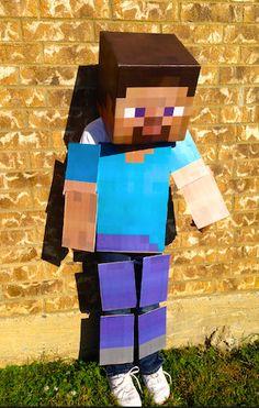 Minecraft Costume Fu