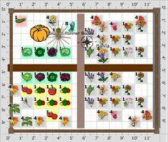 Great Tips On Starting A Community Garden Media Clemson