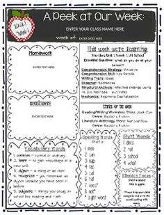 This is a editable lesson plan template for an individual