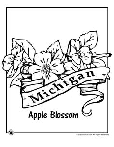 USA-Printables: State of Michigan Coloring Pages