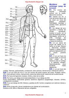 2 Meridiano del intestino grueso (yang de la mano) IG1. A