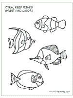Scholastic Spring 2015 Under the Sea Book Fair on