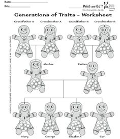 Genetics Heredity Dna Coloring Activity Coloring Pages